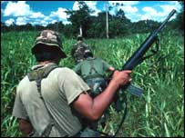 Bolivian army soldier seeks illegal coca crops 