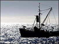 A whaling boat fitted with a harpoon goes in search of Minke whales off the coast of Reykjavik, Iceland 17 August 2003