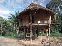 Indian village house, Surinam