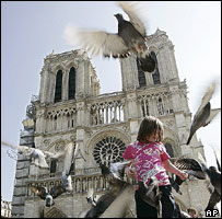 Pigeons in flight, in front of Notre Dame cathedral, Paris