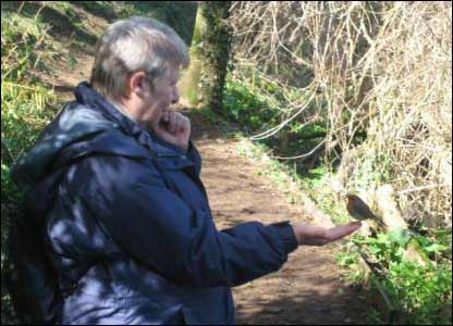 Andrew Goldsworthy's wife Yvonne feeding a robin at Bosherton lily ponds