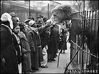 London Zoo, 1920