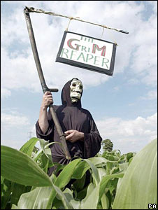 An anti-GM food campaigner wearing a Grim Reaper outfit in Britain. File photo