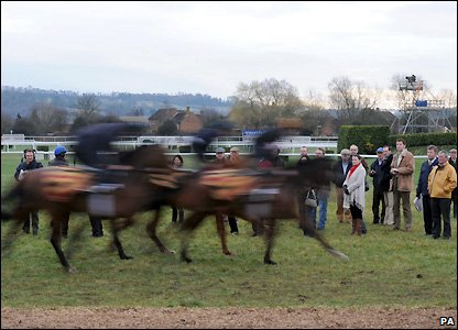 Horses are put through their paces early on Wednesday at Cheltenham