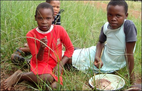 children eating in the grass