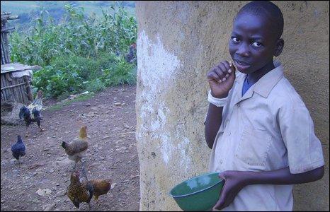 Ndame (boy) feeding chickens