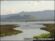 A landscape on the Soysambu estate (image: Soysambu Conservancy website)