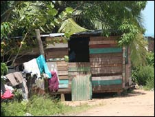 A shack along the Mosquito Coast