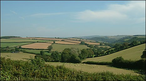 Hedgerows in the South Hams