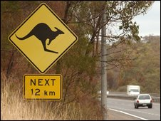 Kangaroo warning road sign in Australia - file image