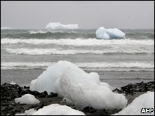 Icebergs seen from Macquarie Island