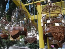 Wooden birdcages