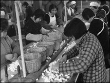 Chinese agricultural workers