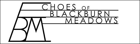 Echoes of Blackburn Meadows
