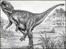 Megalosaurus bucklandi