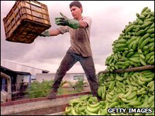 A local Costa Rican unloads bananas