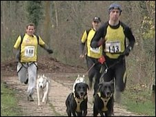 Mike Bushell and other runners taking part in Canix