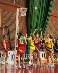 Celtic Dragons in action