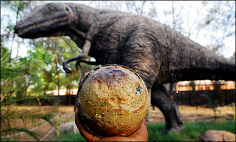 Dinosaur egg recovered in Gujarat