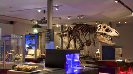 Tyranasaurus rex model in the Great North Museum: Hancock