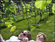 Chidren lie in a vineyard on the Champs-Elysees