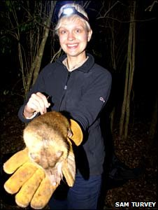 Rebecca Morelle with solenodon (Sam Turvey)