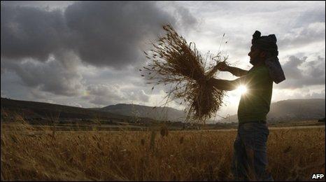 Farmer (AFP)