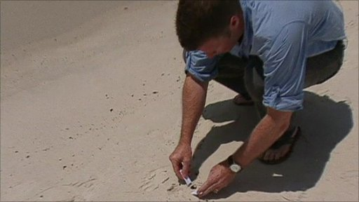 Andy Gallacher scoops up oil on a Florida beach