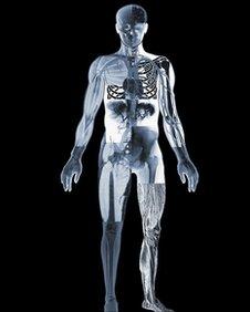 Human body, SPL