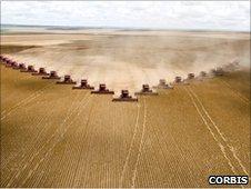 Brazil farmland