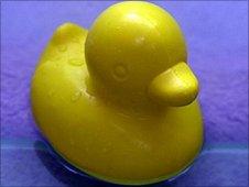 Rubber duck (Image: BBC)