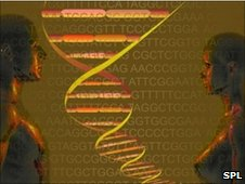 Genome sequencing. Pic:Carol and Mike Werner, Visuals unlimited/SPL