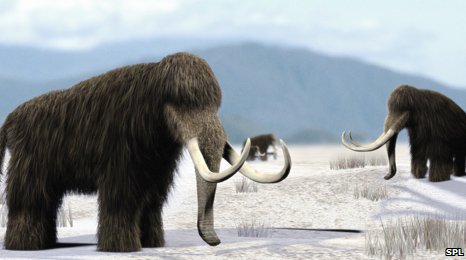 Artist&#039;s impression of mammoths in North America
