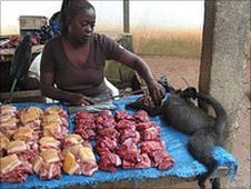 Library picture of a bushmeat market stall in Africa