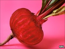 a beetroot