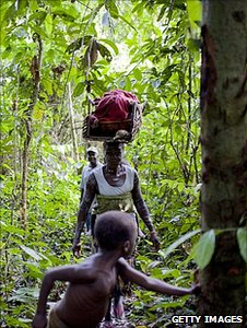 People walking through a rainforest in Liberia (Getty Images)