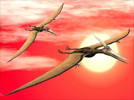 Pterosaurs (SPL)