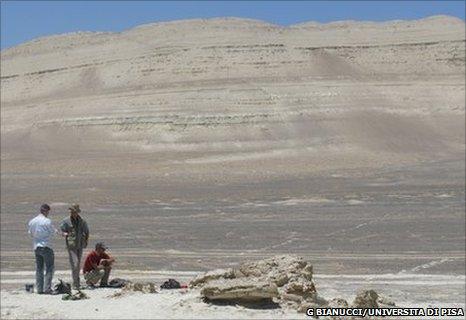 Pisco-Ica desert, Peru