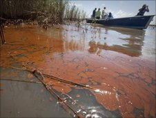 Oil in a marsh near Louisiana