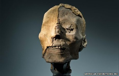 Mummy head (Image: American Exhibitions Inc.)