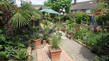 Exotic garden in Castleford