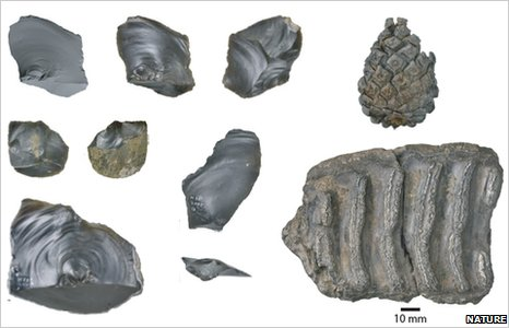 Ancient tool remains discovered in Happisburgh in North Norfolk (Image: Parfitt et al/Nature)