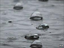 Rain drops in a puddle