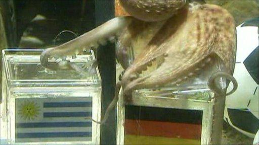 Paul the Octopus chooses the Germany box