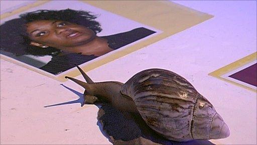 Snail and Diane Abbott