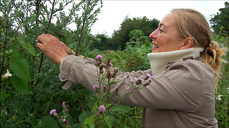Chef Nanna Vestergaard foraging for flowers to use in dishes for Restaurant Sat Bains