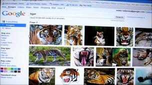 screenshot of tigers
