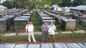 Senior Randgold executives inspect core samples at Kibali (undated handout picture)