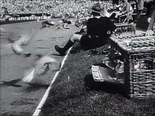 Birds being let out of the cages during the 1948 opening ceremony.