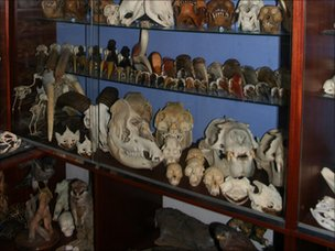 Police found this room full of skulls at Alan Dudley's house